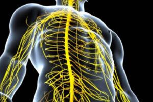 Dëmtimi i nervave, 8 shenjat që nuk duhen neglizhuar