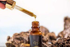 Vetitë e propolisit për shëndetin oral