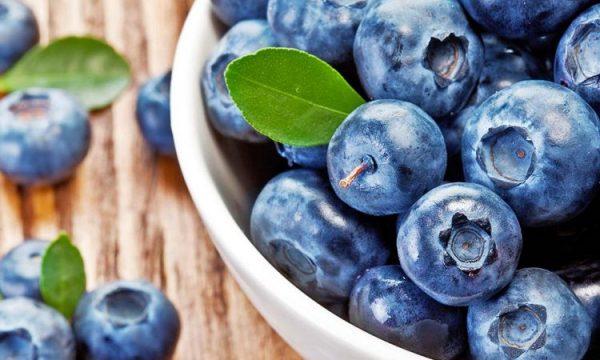 Frutat dhe perimet e pasura me hekur